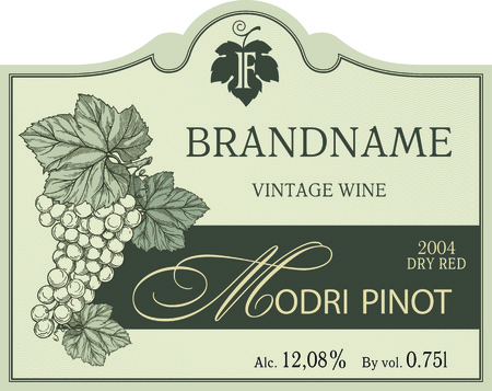 Vintage wine label vector template with illustration of engraved bunch of ripe grapes with leaves. Ilustrace