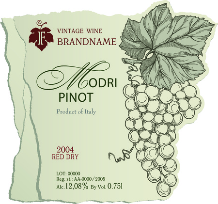 Vintage wine label template with illustration of engraved bunch of ripe grapes with leaves.