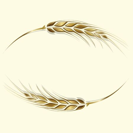 Vector illustration of two gold ripe wheat ears. Can be used as frame, corner or border design element.