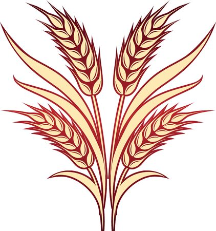 Vector illustration of gold ripe wheat ears. Can be used as logo or brand icon template; frame, corner or border design element.