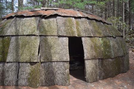 wigwam: wigwam in the forest