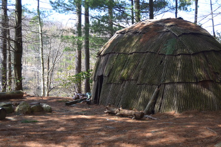 wigwam: wigwam in the forest