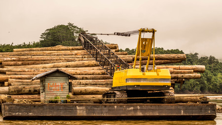 Big yellow machine load timber into the barge in the river.
