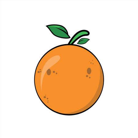 Illustration graphic vector of orange fruit on white background, citrus,orange. 免版税图像 - 151725896