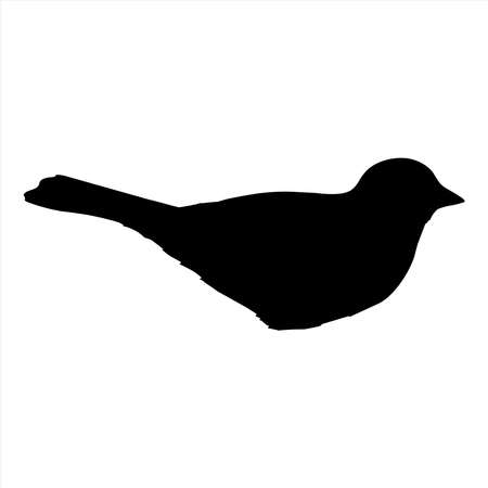 Bird vector, bird icon vector, vector illustration.