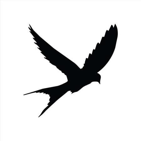 Bird vector, bird icon vector, vector illustration