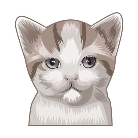 Illustration graphic vector of Cute Cat, Cat vector illustration.