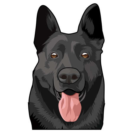 illustration graphic vector of pet vector, german sheperd vector illustration, german sheperd black vector.