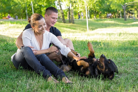 rottweiler: Dog plays with the owners on the grass. Focus on couple