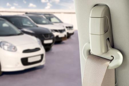 cinturon seguridad: cinturón de seguridad sobre un fondo blanco