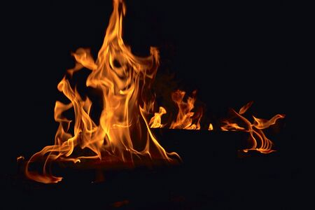 Bright, strong fire. A fire is burning. Tongues of flame