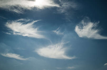 cirrus: Unusual cirrus clouds looking like feathers in blue sky