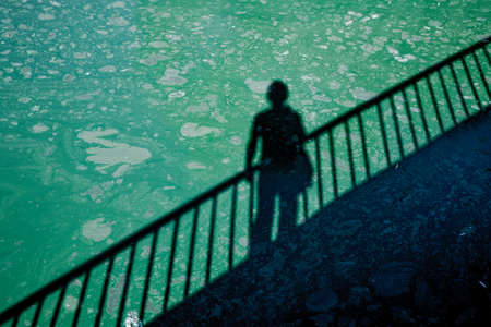 toxic water: A man casting shadow on dirty green toxic water contaminated with algae Stock Photo