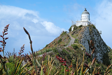 Nugget Point Lighthouse in New Zealand Imagens - 115682041