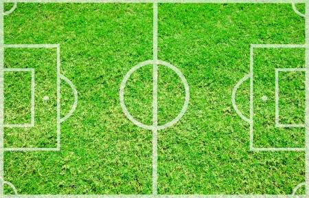 touchline: Football field