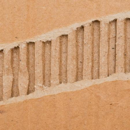 vertical divider: Tear Paper