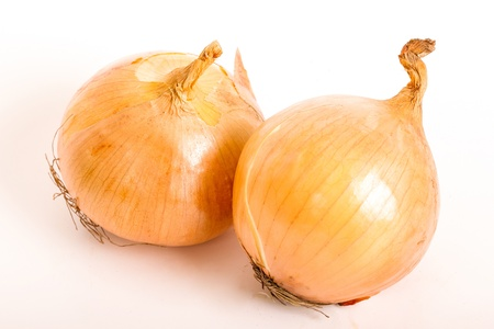Close up onion with white background photo