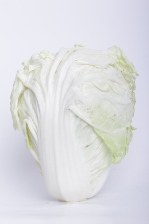 Stand Cabbage with white background photo