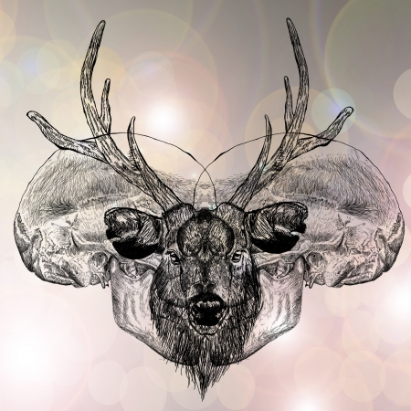 horny: Deer head  and human bone with pink Bokeh in new year