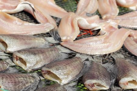gourami: Snakeskin gourami fish drying in the outside in Thailand Garden