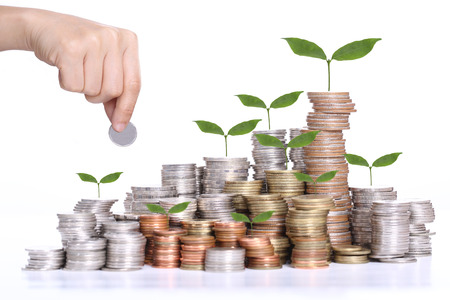 growing money: investment concept on stacked coins Stock Photo