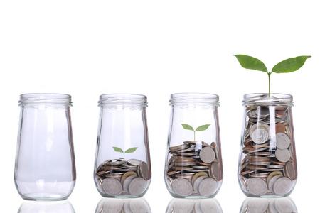 Crescendo passo planta com dinheiro das moedas