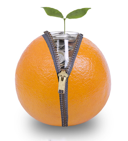unzip: Unzip orange  for growing money inside with white background