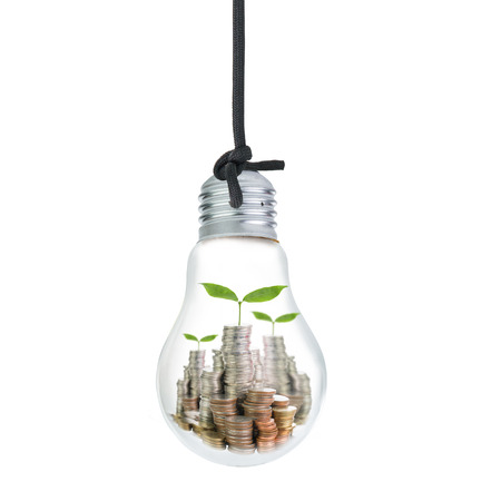 Growing money inside your idea bulb isolated with whie background Stockfoto