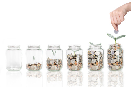 Growing plant step with coin money ,saving for investment in the future
