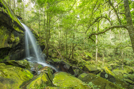 Water fall in the nature Banco de Imagens
