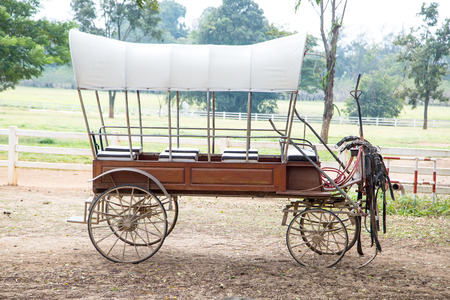horse and carriage: Traditional horse carriage