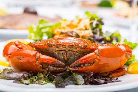cangrejo: cangrejo de barro de chile en el restaurante Foto de archivo