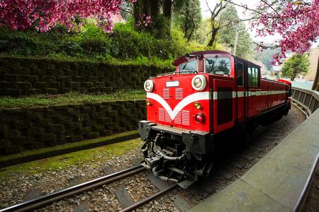 Traditional Train Run in Alishan Train for trasport passager