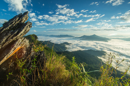 tang: Mountain mist of Thailand landscape ,Doi Pha Tang (Chiang Rai)  in morning with HDR