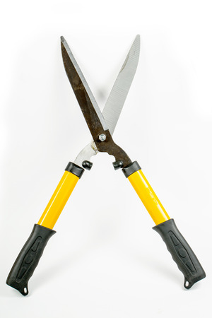 garden shears: Garden shears isolated with white ,new for use