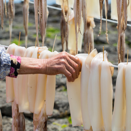 hang body: Squid ,Raw material dried for process to do food dry Stock Photo