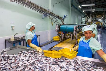 Hatyai, Songkla-Auguest 31,2015: Arbeiter sind cleanning Rohstoff Sardine Fische in Fischkonserven-Fabrik in Songkla, Thailand Produktionslinie zu senden. Standard-Bild - 46891417