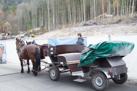 neuschwanstein: MUNICH ,GERMANY -Nov 8 2015 :Horse service for go to Neuschwanstein Castle in Germany. Service for tourist people.