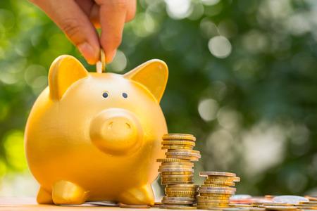 fondos negocios: Ahorrar dinero para preparar en el futuro. Foto de archivo