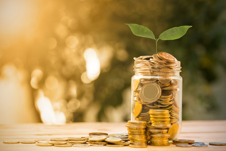 hand tree: Save money with money coin for growing your business Stock Photo