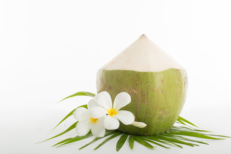 tropical drink: Summer coconut tropical drink for your holiday.