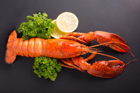 Canadian lobster food on gourmet dinner background Stock Photo