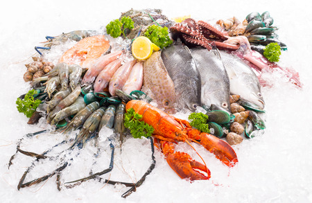 Seafood market sea raw material