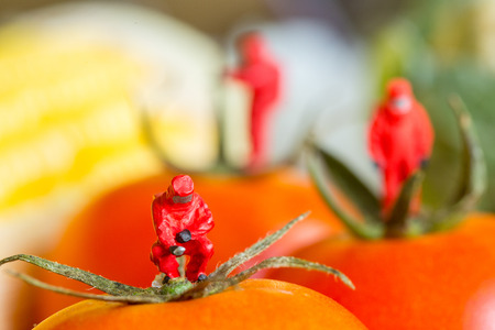 Protective suit science  people inspecting food and fruit with food danger concept. Stock Photo