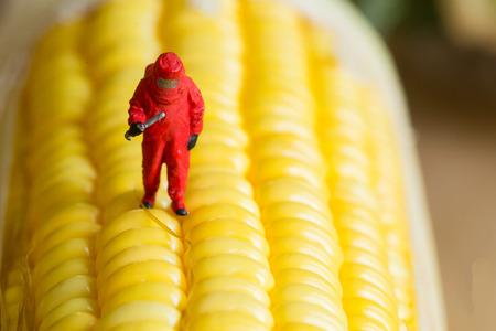 危険食品 GMO 科学テスト領域で働いています。 写真素材