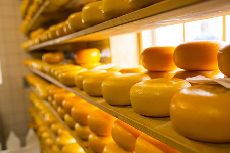 Yellow cheese dairy product food for cooking.