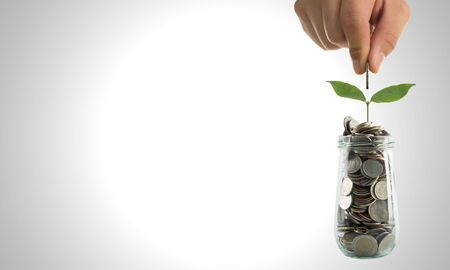 Investment your budget for growing your business with watering can Standard-Bild