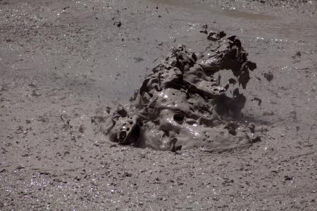 Boiling Mud Pool Stock Photo