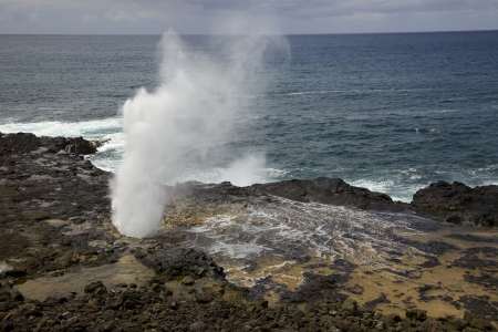 orificio nasal: El espir�culo conocido como Spouting Horn en la costa sur de Kauai