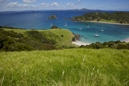 View of Bay of Islands New Zealand